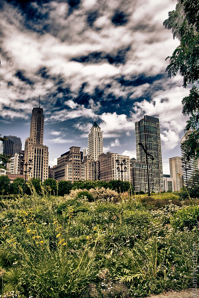 Moody Windy City by anorth7