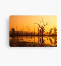 Dawn at Elm Lake Canvas Print