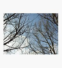 To touch the sky is a wonderful thing Photographic Print