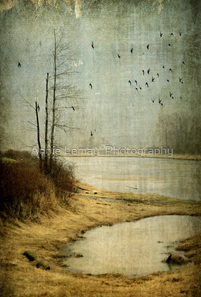 Dewdney by Annie Lemay  Photography