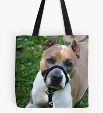 Meeting Champ on July 29, 2012 Tote Bag