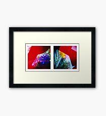 Obscured - 120 Color Holga Diptych  Framed Print
