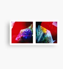 Obscured - 120 Color Holga Diptych  Canvas Print
