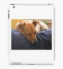 Jack Russel  iPad Case/Skin