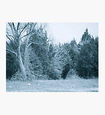 Blue tint Photographic Print