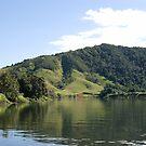 Daintree River, Far North Queensland by Adrian Paul