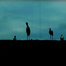 Silhouette by Thet Htut
