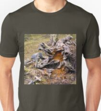 Calafate Natural Park T-Shirt