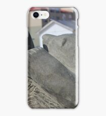 Polar Pow Wow iPhone Case/Skin