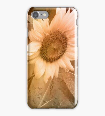 Disintegrate iPhone Case/Skin