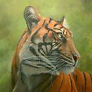 Sumatran Tiger by Carole Russell