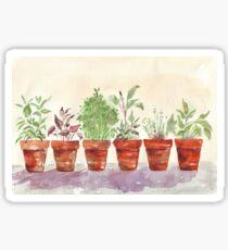 Herbs - Inside or outside? Sticker