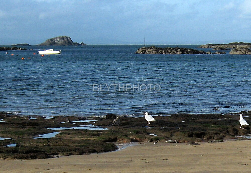 136 - LAMB ISLAND SEEN FROM NORTH BERWICK  (D.E. 2010) by BLYTHPHOTO