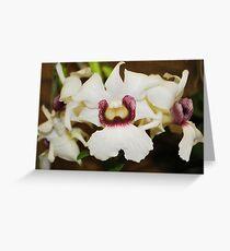Cattleya Greeting Card