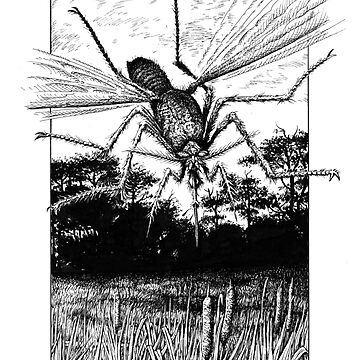 Giant Mosquito by tonyhough