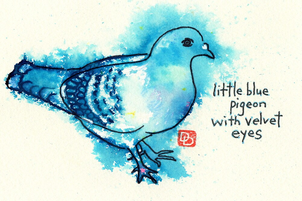 Little Blue Pigeon by dosankodebbie