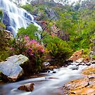 Grampians, Victoria, Australia by Amber  Williams