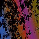 Rainbow by pilanehimself