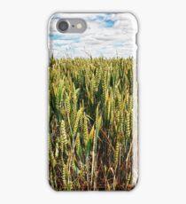 Wheat Crops iPhone Case/Skin