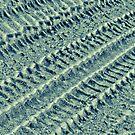 Trendy tyre tracks by Fizzgig7