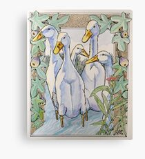 Finished ,Duck,fig & ginger plant. Canvas Print