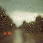 summer rain by beverlylefevre