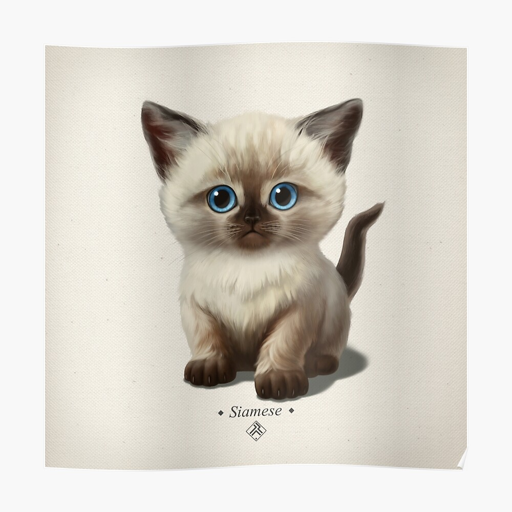 Cataclysm- Siamese Kitten Classic Poster