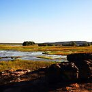 The magic of Arnhem Land - a wetlands scene by georgieboy98