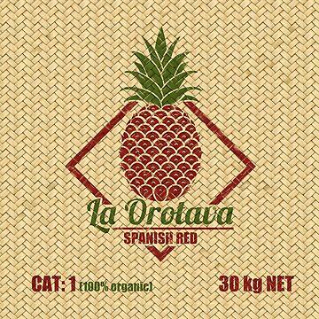 Fruits - Pineapple Basket by ikerpazstudio