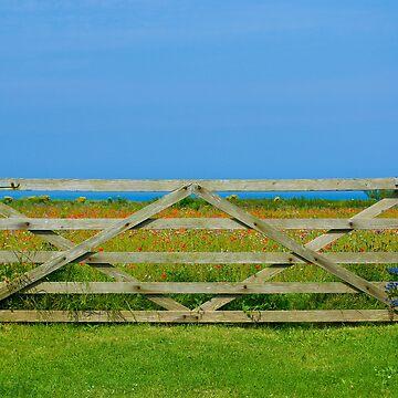 Gate_Crantock by TabithaB-W
