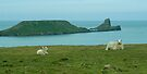 Gower Peninsula by Yukondick