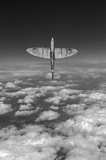 A cut above, black and white version by Gary Eason