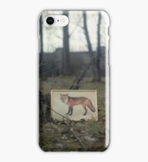 Little fox iPhone Case/Skin