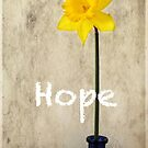 Hope by Eve Parry