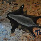 Pub wall by Karen01