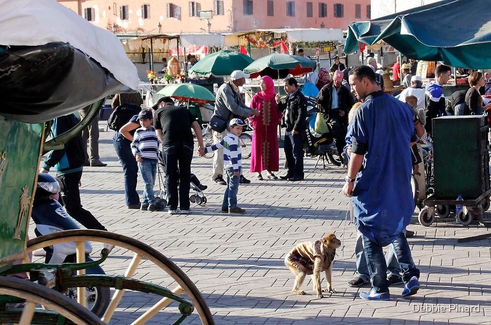 The Monkey Man - Marrakesh Morocco by Debbie Pinard