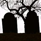 A Cemetery Point of View by John Butler