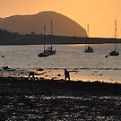 Mussel Picking Campbeltown Loch by photobymdavey