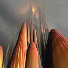 Fire Top Mountain by Julie Everhart