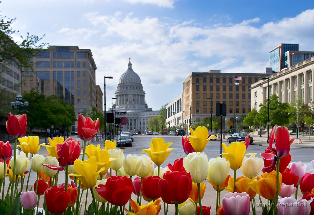 Colourful Wisconsin Capitol - USA by Norman Repacholi