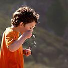 The Bubble Blower by Lynne Morris