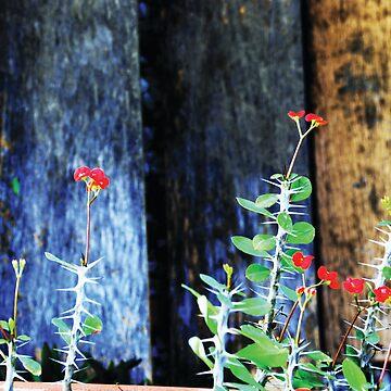 The Rustic Spike by Orangemoth