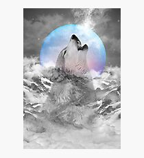 Maybe the Wolf Is In Love with the Moon Photographic Print