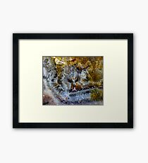 Pussycat Pussycat What Can You Hear? Framed Print