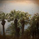 Tropical Storm by Carol Bleasdale