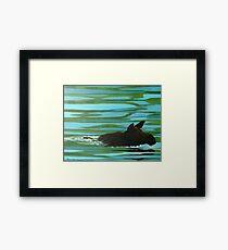 Moose on the Miramichi River Framed Print