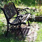 In my neighbor's wild garden by bubblehex08