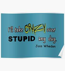 'I'll Take Crazy Over Stupid Any Day' Joss Whedon Poster