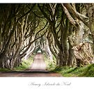 Driving through Scotland, Ireland and England by Jacinthe Brault