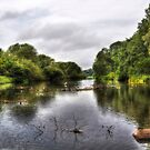coombe abbey Pool by MartinMuir